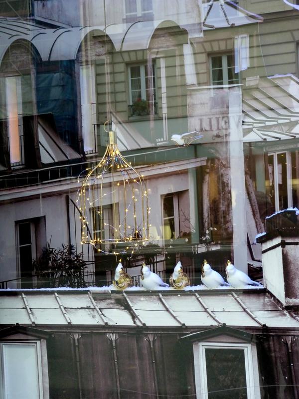 Toits mon Paris 7