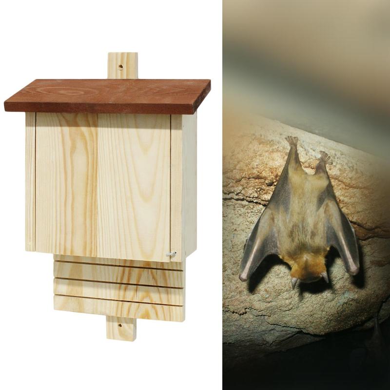 maison-abri-chauve-souris