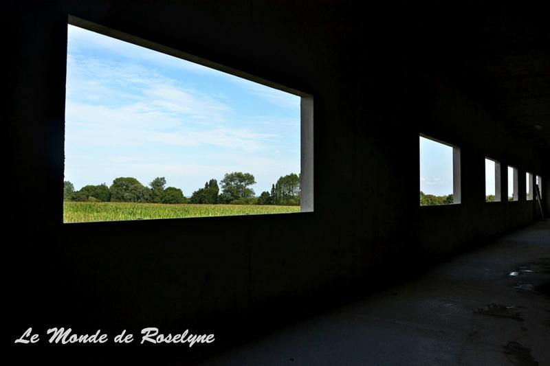 vue des fenêtres des blocs avant la construction intérieure