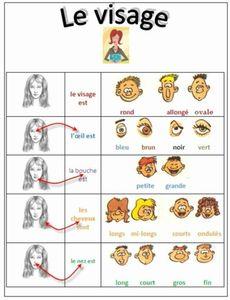 description-visage