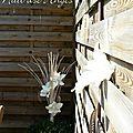 Nuit des anges décoratrice de mariage décoration de table bois flotté nature 014