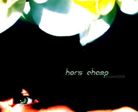 hors_champ