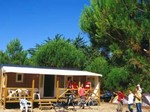 camping_1_lac_sanguinet_12