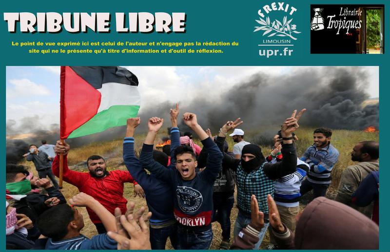 TL TROPIQUES GAZA MANIF