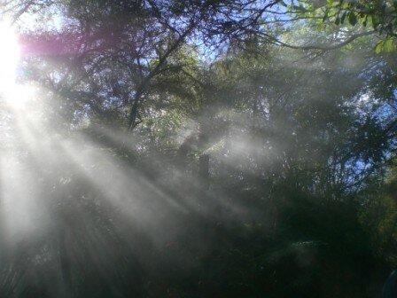 Rotorua_Waimangu 012