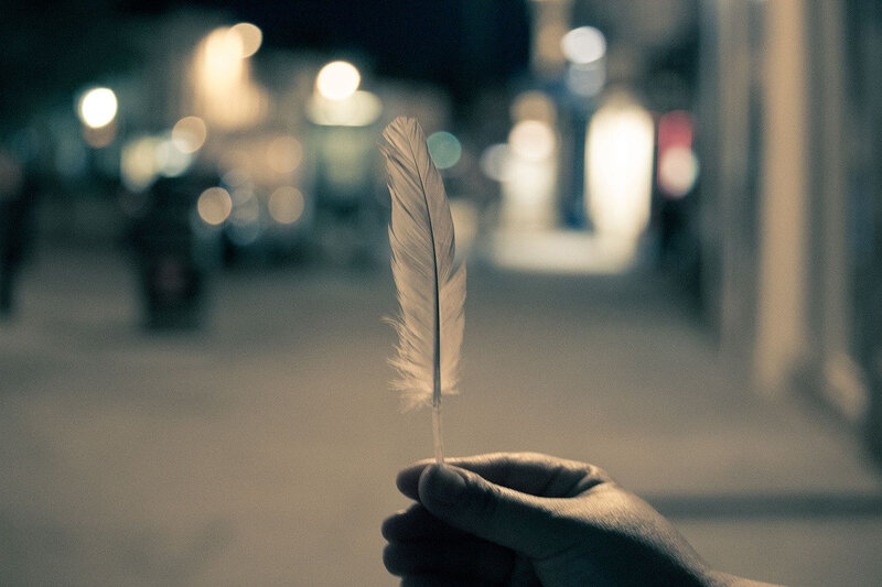 feather-2619475_1280