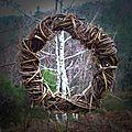 bouleau dans une couronne land art yurtao