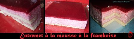 Feuillety___Mousse_fruits_rouges___P_te_bris_e_089_canalok