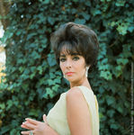 liz_by_mark_shaw_1961_p02_5