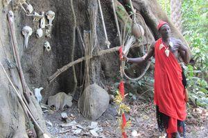 Sénégal (570)
