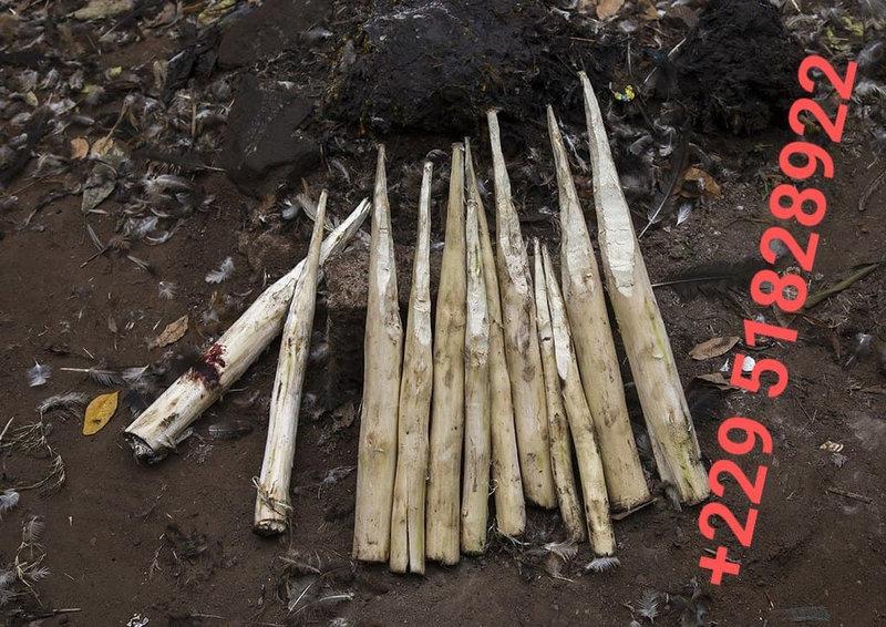 COMBATTRE LA SORCELLERIE AFRICAINE AVEC LE VOYANT AGBO