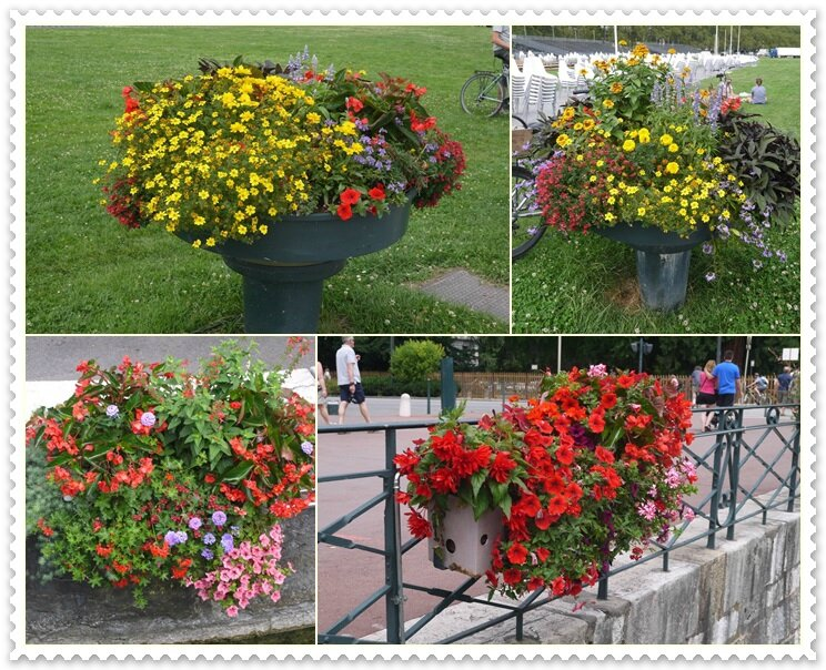 020 bacs à fleurs