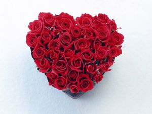 love_red_rose_heart_7038