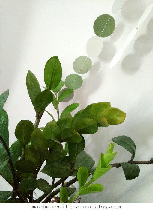 plantes et guirlande marimerveille