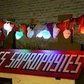 LES SAPROPHYTES du 1 fev au 25 mai 2010
