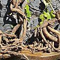 Photo-mystère dans le cantal