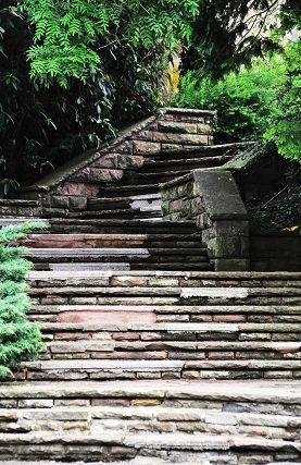 escaliers0