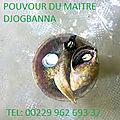 L'escargot d'execution de voeux rapide du maître marabout djogbanna