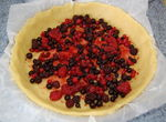 Tarte_fruits_rouge_et_pistache_002