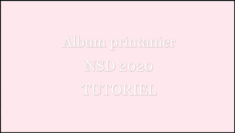 Image video tutoriel NSD