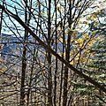 Issaux à travers les arbres du Castillon...