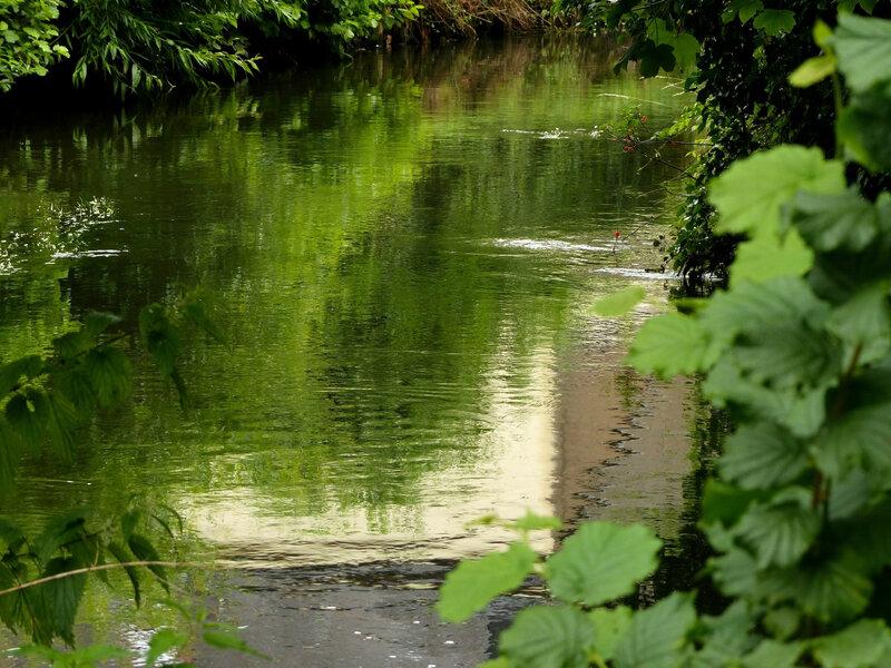 riviere jpg