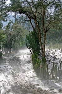 neige_en_Ethiopie_3