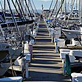 Golden Gardens Marina Seattle 2