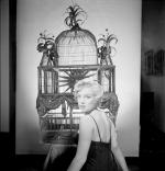 1954-ny-77_street-mm_in_dress-birdcage-015-1