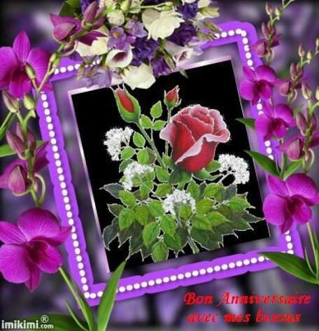 anniv fleurs rges et violettesbPat15