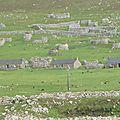 2011 Saint Kilda