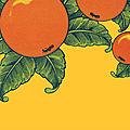 Rentrée littéraire : ceux que je suis olivier dorchamps aborde la double culture avec une grande sensibilité
