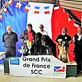 attelage canin GRAND PRIX DE FRANCE Podium DIWALL DE LA DULLAGUE