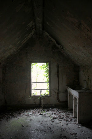 12_Ambiance_ferme_chateau_abandonn__7971