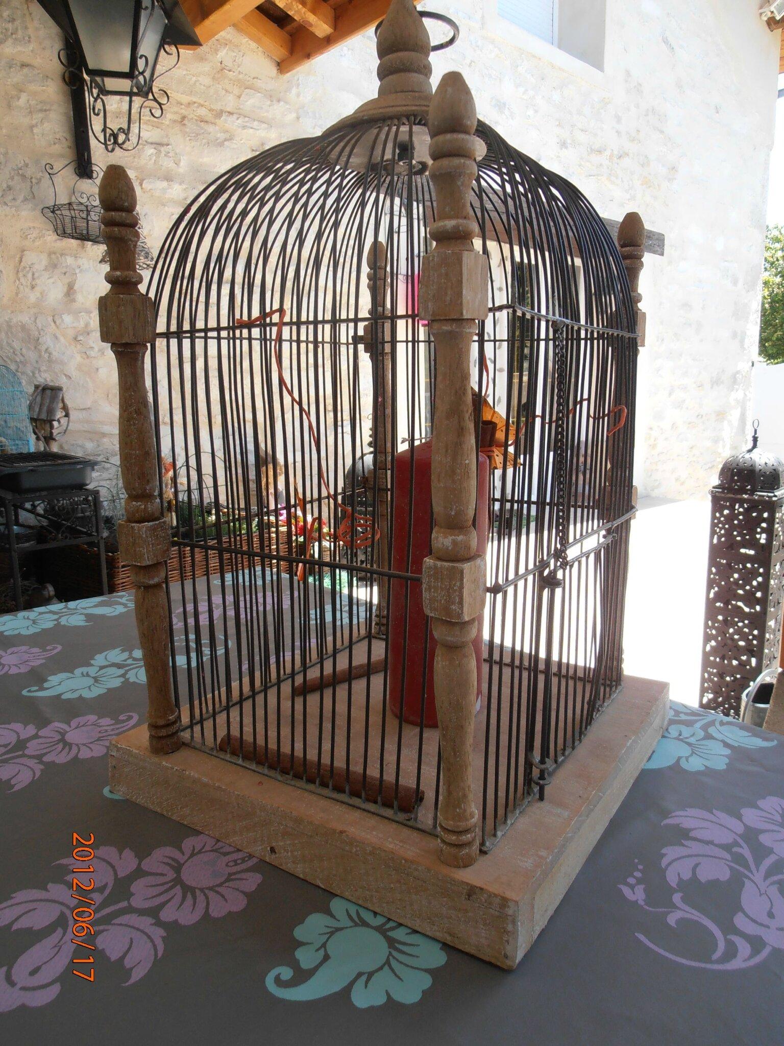 encore une cage oiseau les folies de sophie mon grenier malicieux. Black Bedroom Furniture Sets. Home Design Ideas
