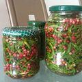 Salicornes au vinaigre et aux baies roses