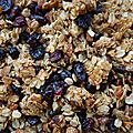 Granola aux cranberries