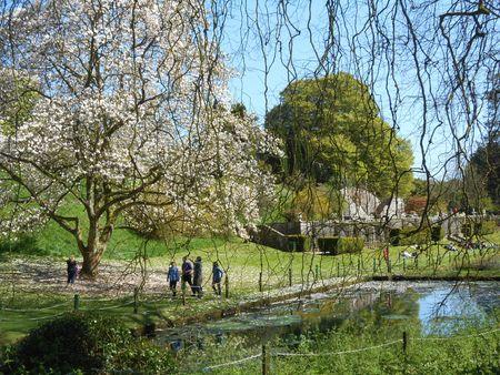 Parc du château (4)