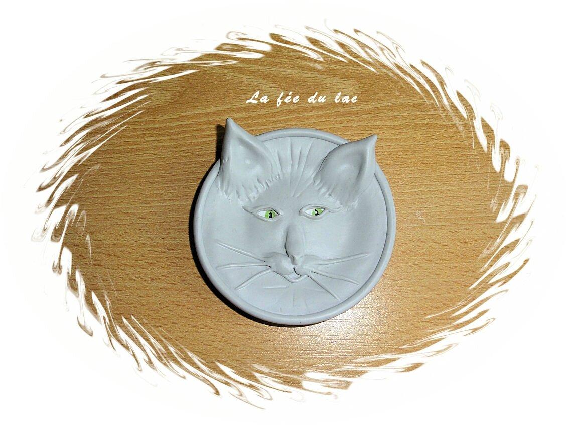 Vide poche chat gris 1