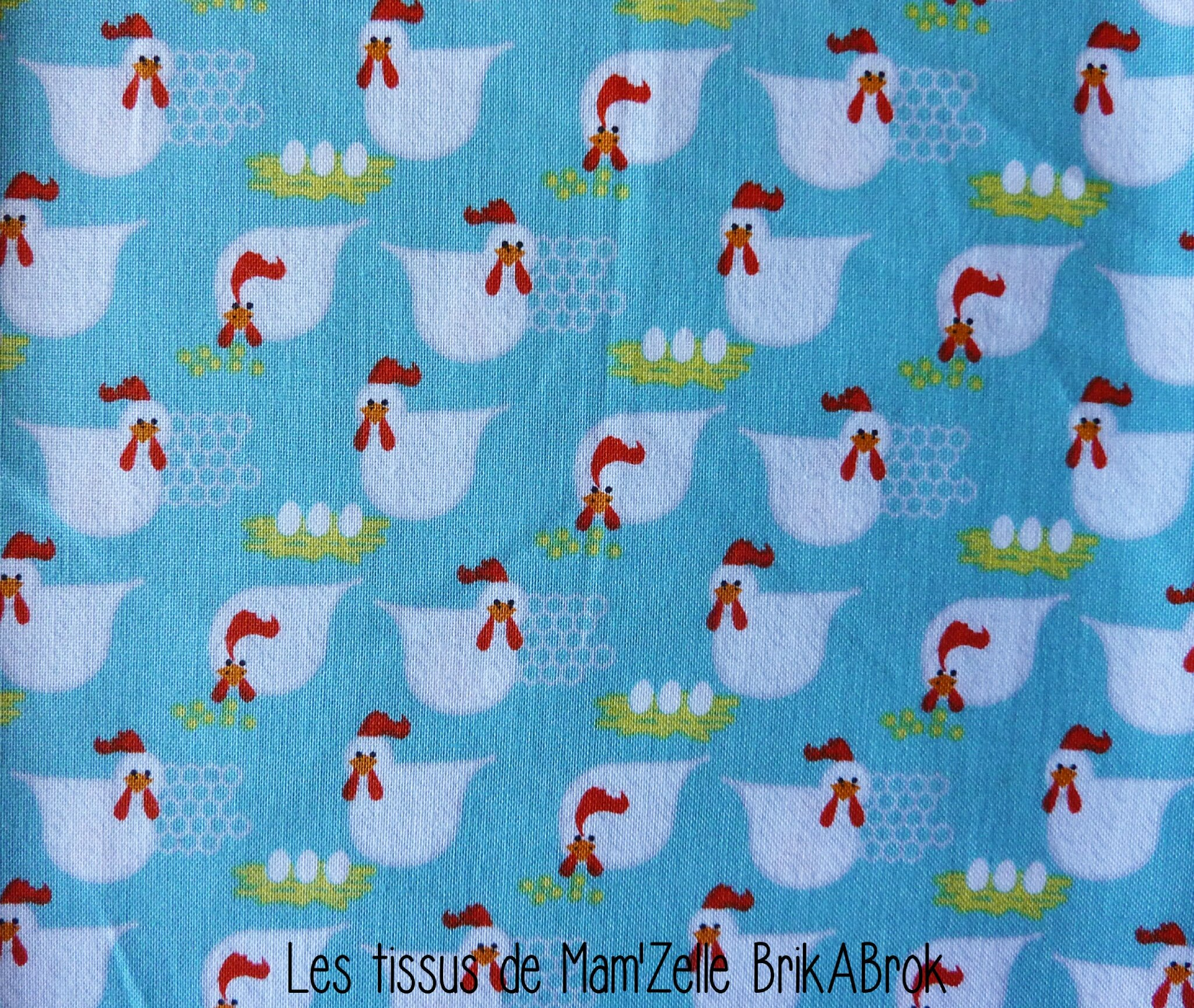 507 - Les petites cocottes