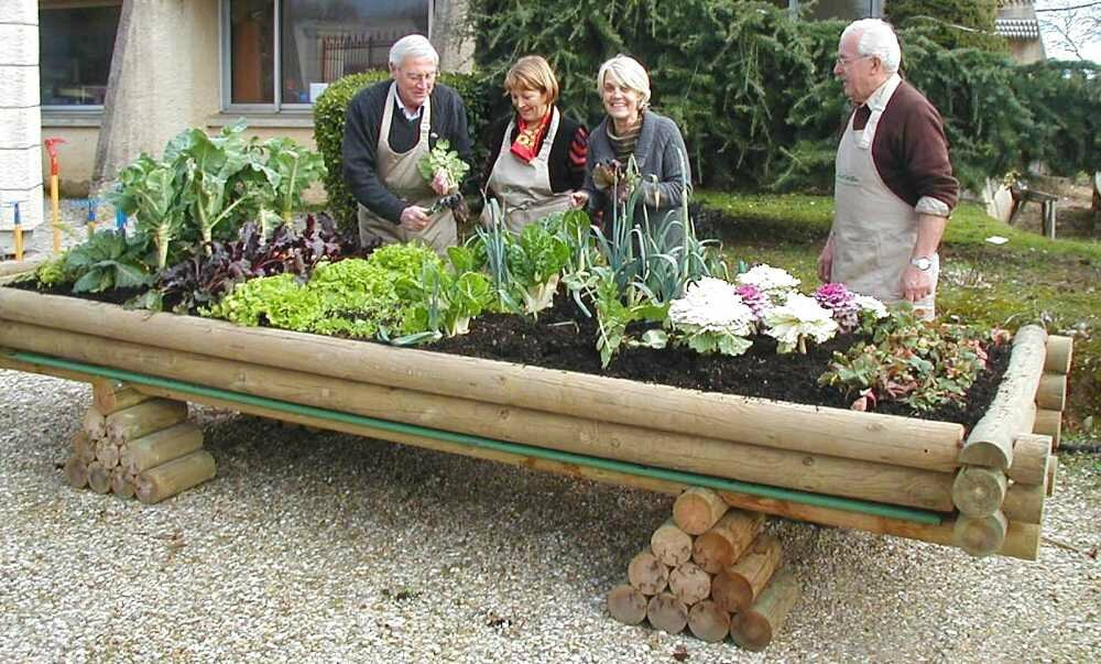 Un Potager Sureleve Article Co