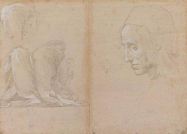 Raffaello Sanzio, dit Raphaël, Étude pour une draperie et tête d'homme (verso), Pointe de métal, rehauts de blanc sur papier préparé rose pâle