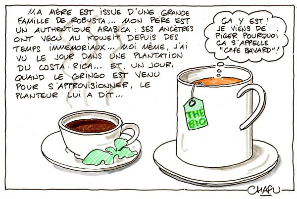 8-Cafe