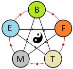 roue des 5 éléments+Yin-Yang