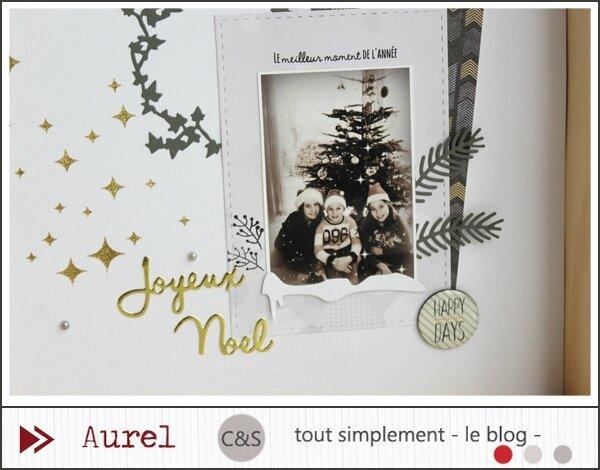 111216 - Joyeux Noël_page_3_blog
