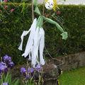 Art dans les jardins à château-gontier