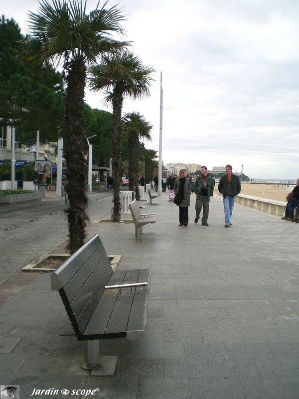 Bancs de la promenade en front de mer à Arcachon