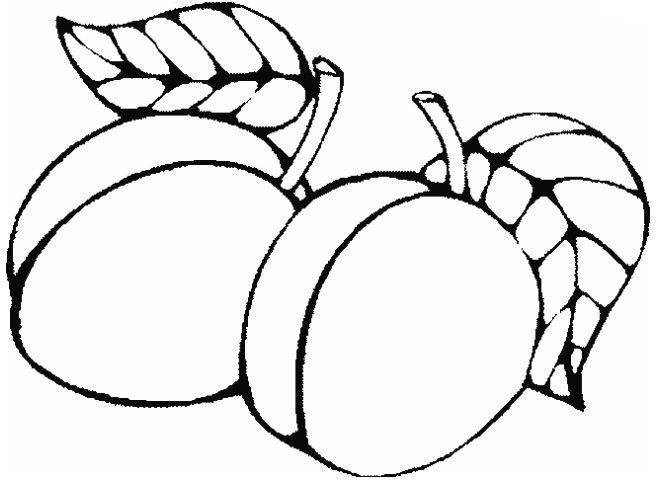 Coloriages Fruits Et Légumes Les Ptites Canailles