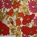 poppy & daisy rouge, aujourd'hui vintage (photo de 2007 - silo)