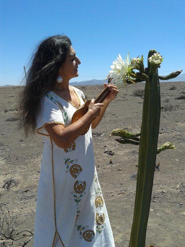 Jacqueline Castro Ravelo, nació en Santiago, hija de Madre Artesana Antofagastina, Elisa Ravelo Palacio y Padre Ingeniero, Nahum Castro Henríquez, quien fue director de los Ferrocarriles del Estado de Chile en época de la Unidad Popular. Su infancia la vi